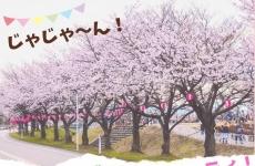 【4/6(土)開催】ぎこぎこ、ぺたぺた、パパパパ パーティ! in オレンジパークふなはし