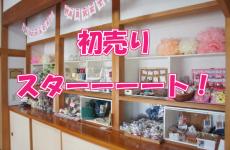 【初売♡】mamasky houseの展示BOXが1/5~11まで初売セール