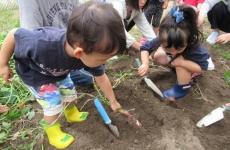【11月開催】親と子のふれあい広場に参加しよう!