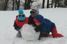 【2/2(土)開催・年長~OK】冬の自然を思い切り楽しめる「森育ワークショップ」!