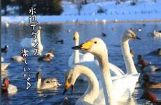 ママが知っておきたい情報がいっぱい!!富山地域の「広報」はWEBでも読める♡