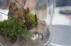 【開催レポ】「小さなお庭」の作り方|家元×成和造園×mamaskyコラボイベント