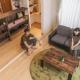【新築住宅に潜入|高岡市】「無垢床・漆喰壁は高い!?」予算内で自然素材のマイホーム購入を実現されたご夫婦の話