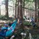 【小1~小3対象】森の中に自分たちだけの公園を作ろう!