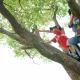 【新小1~新小4対象】自然体験×読解力!春の特別体験会でアルファ進学スクール「探求型学習プログラム」を体感!